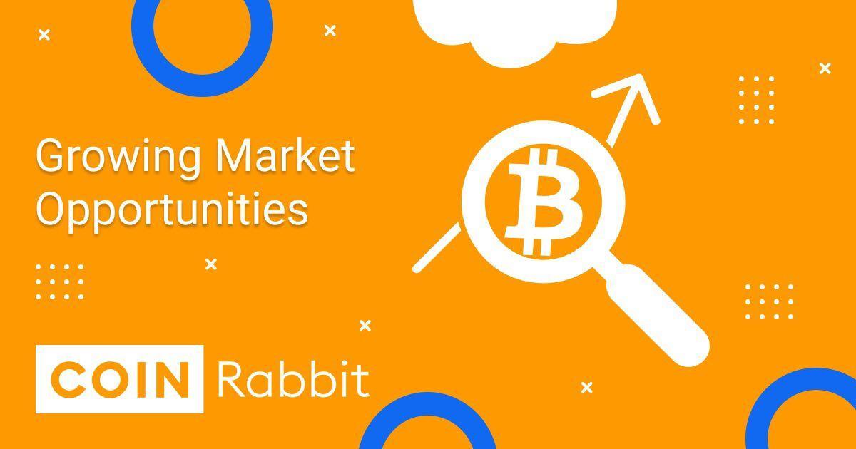 Bitcoin cash crypto review 7